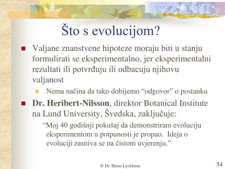 Što s evolucijom
