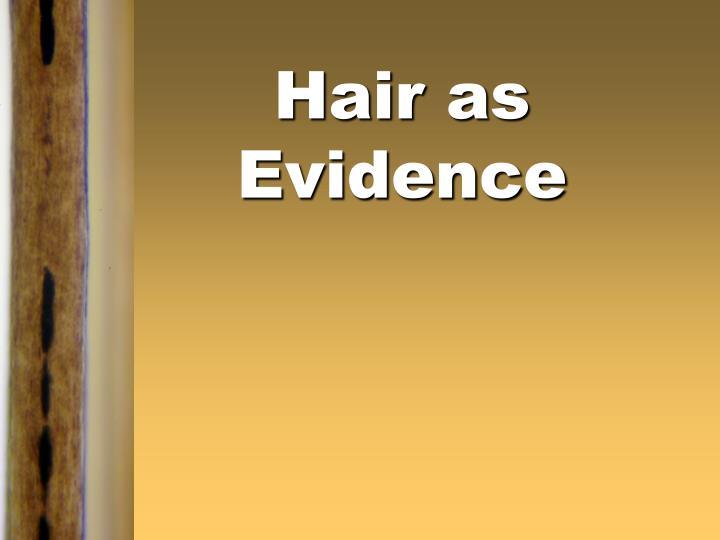 hair as evidence n.
