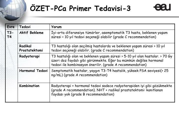 ÖZET-PCa Primer Tedavisi-3