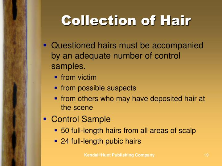 Collection of Hair