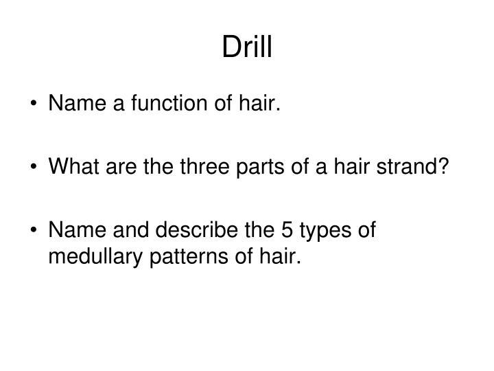 drill n.