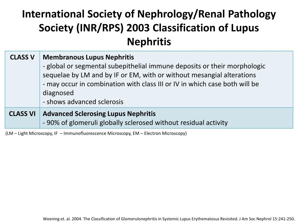 PPT - WHO Classification of Lupus Nephritis PowerPoint