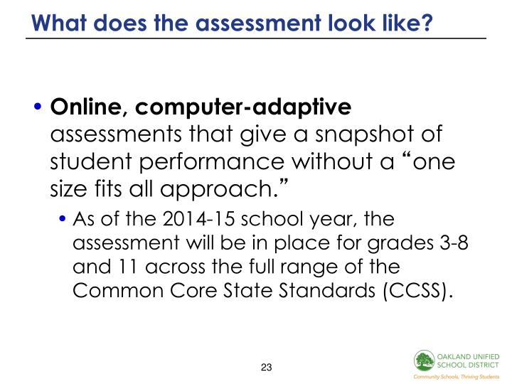 What does the assessment look like?