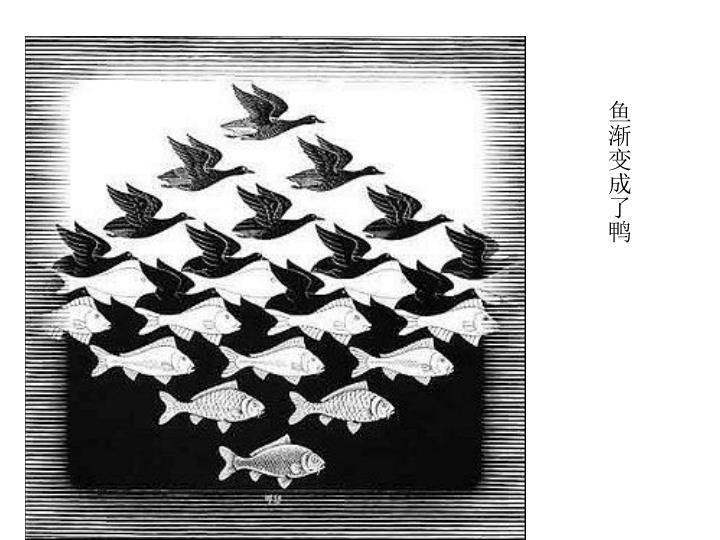 鱼渐变成了鸭