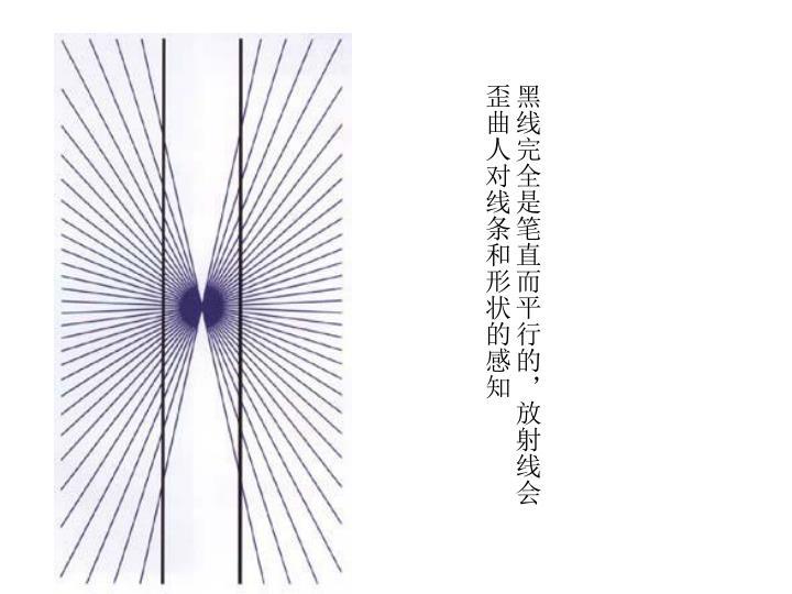 黑线完全是笔直而平行的,放射线会歪曲人对线条和形状的感知