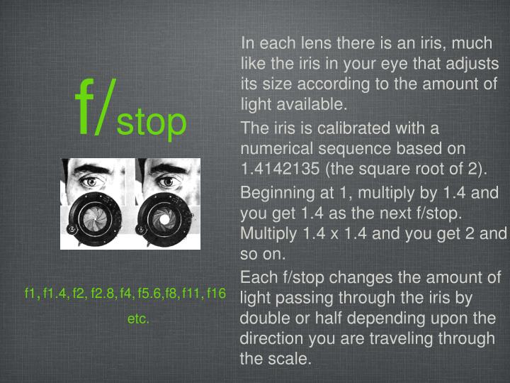 In each lens there is an iris, much like the iris in your eye that adjusts its size according to the amount of light available.