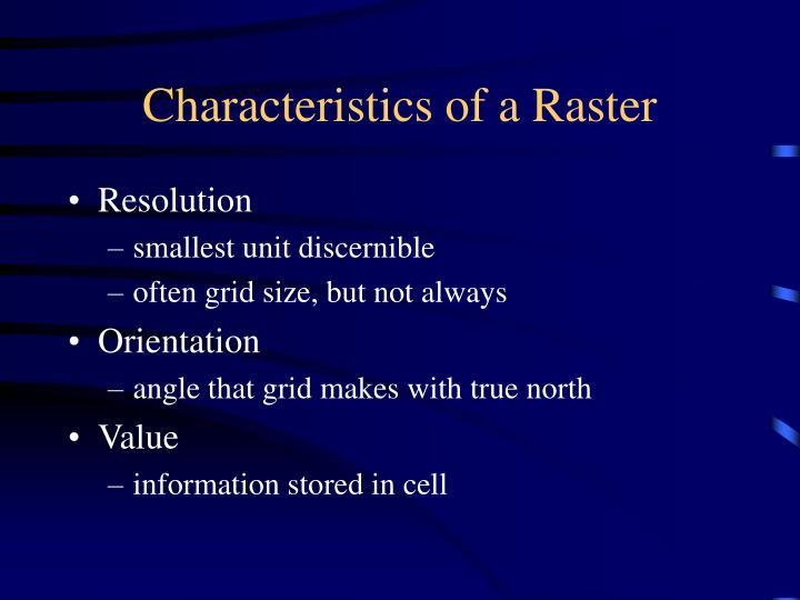 Characteristics of a Raster