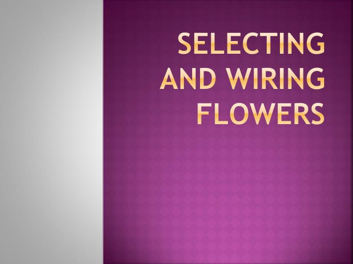 selecting and wiring flowers n.