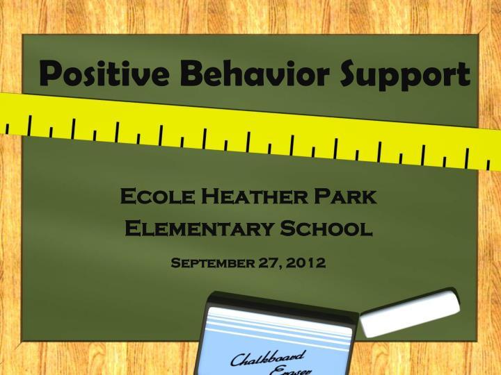 positive behavior support n.