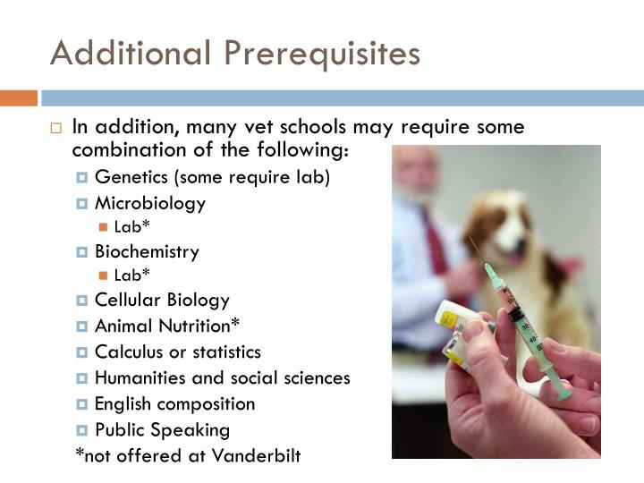 Additional Prerequisites
