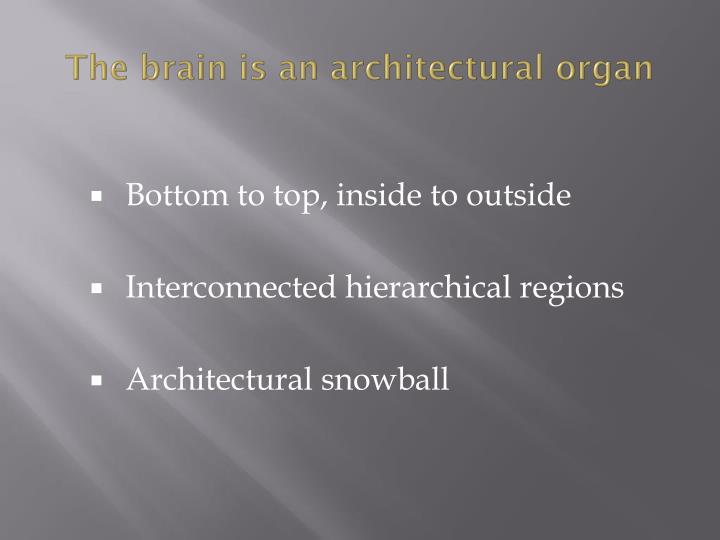 The brain is an architectural organ