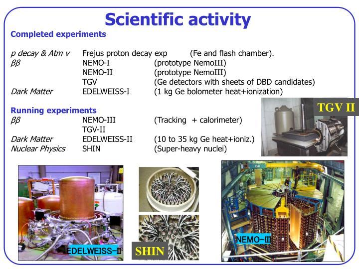 Scientific activity