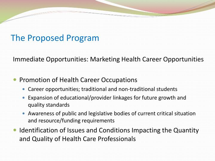The Proposed Program