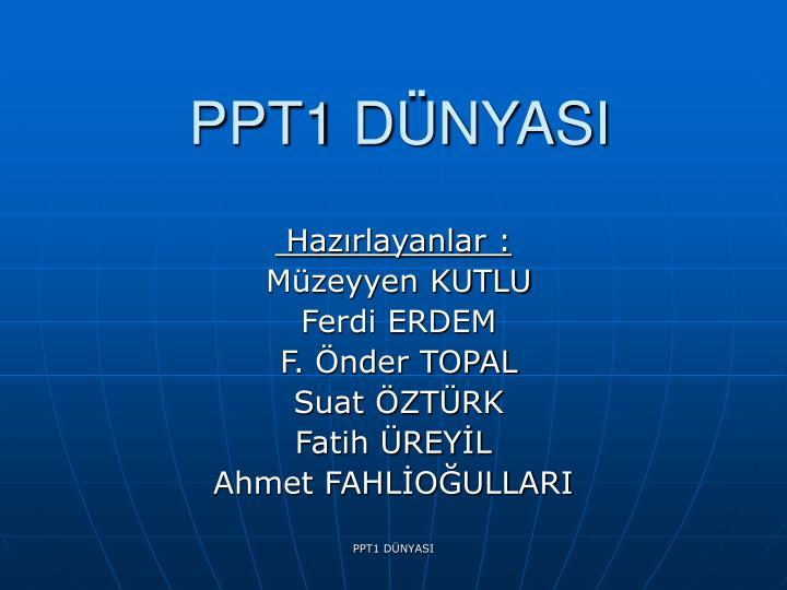 ppt1 d nyasi n.