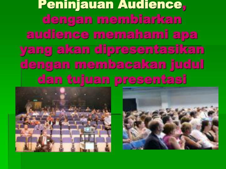 Peninjauan Audience