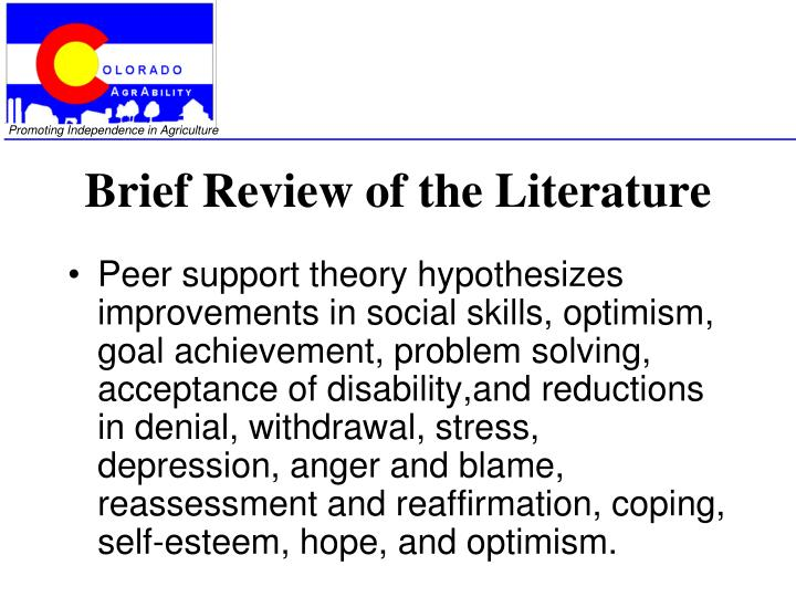 Brief Review of the Literature