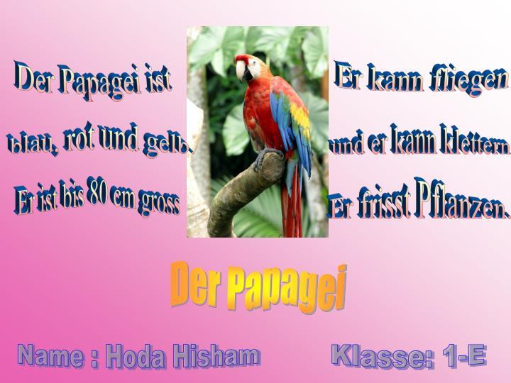 Der Papagei ist