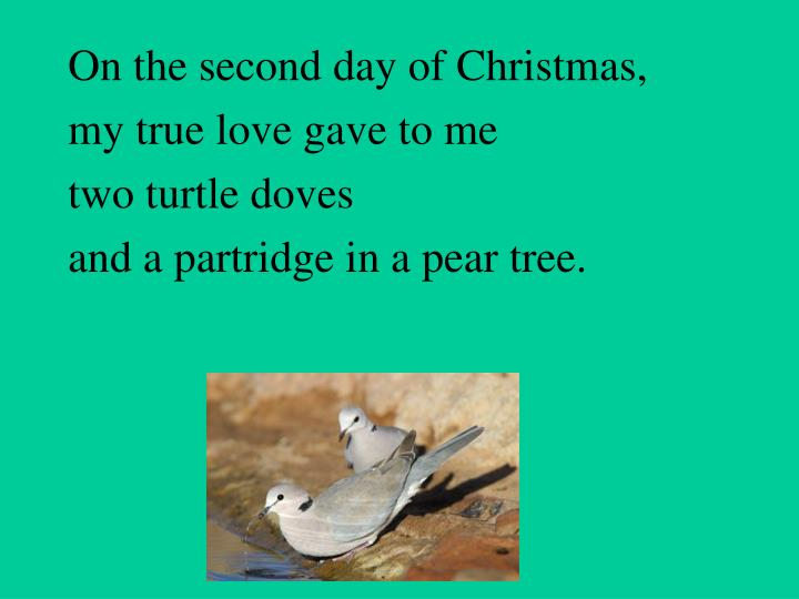 On the second day of Christmas,