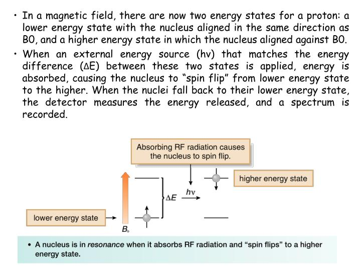 In a magnetic field, there are now two energy states for a proton: a lower energy state with the nucleus aligned in the same direction as B0, and a higher energy state in which the nucleus aligned against B0.