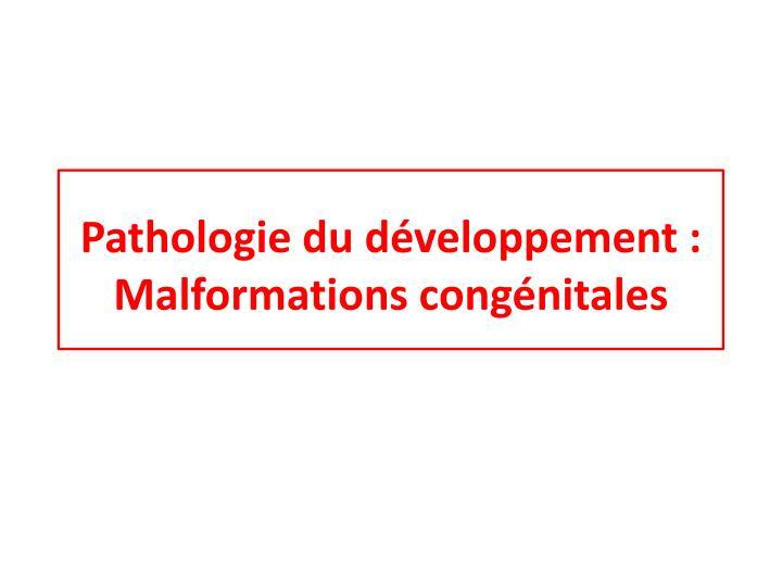 pathologie du d veloppement malformations cong nitales n.