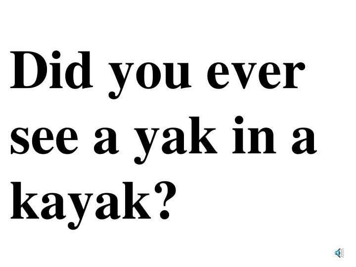 Did you ever see a yak in a kayak?