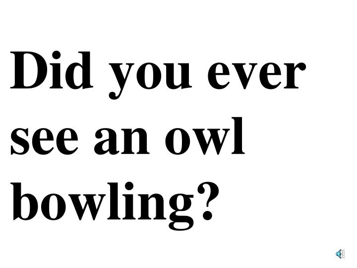 Did you ever see an owl bowling