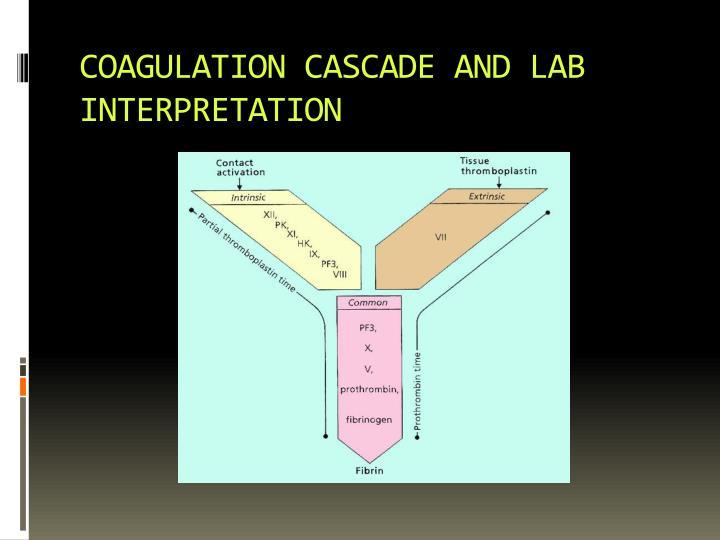 COAGULATION CASCADE AND LAB INTERPRETATION