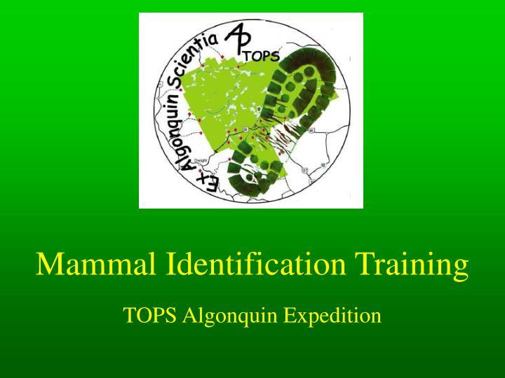mammal identification training n.