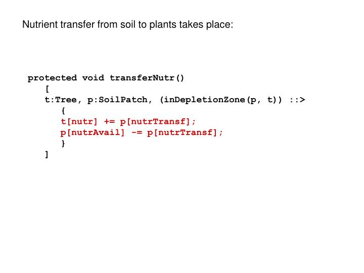Nutrient transfer from soil to plants takes place:
