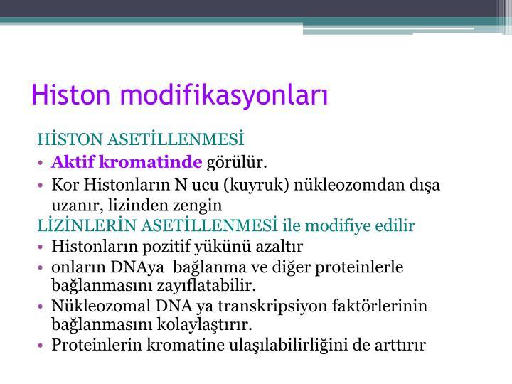 Histon modifikasyonları