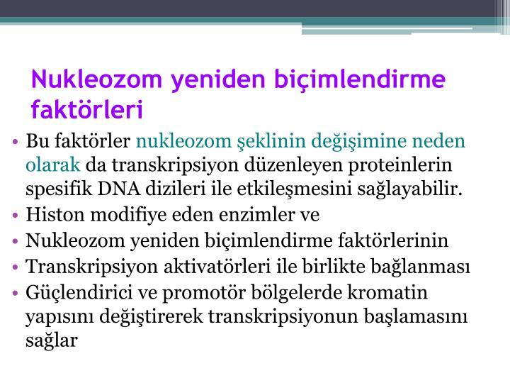Nukleozom yeniden biçimlendirme faktörleri