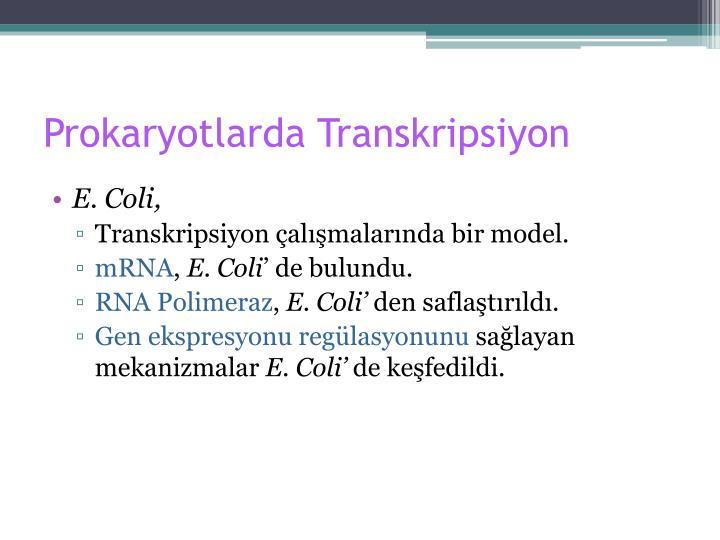 Prokaryotlarda Transkripsiyon