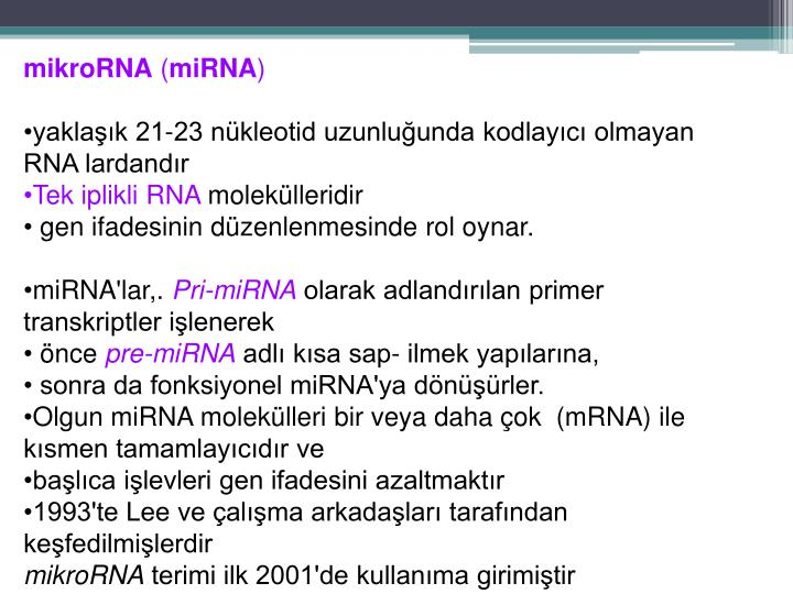 mikroRNA