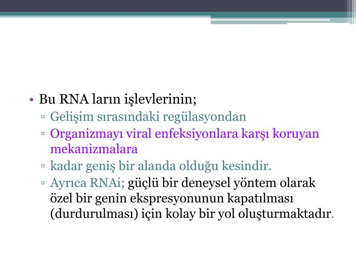 Bu RNA ların işlevlerinin;