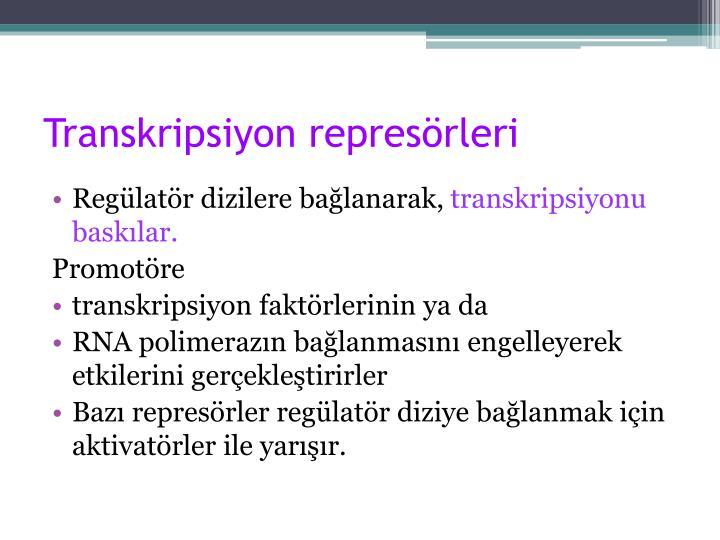 Transkripsiyon represörleri