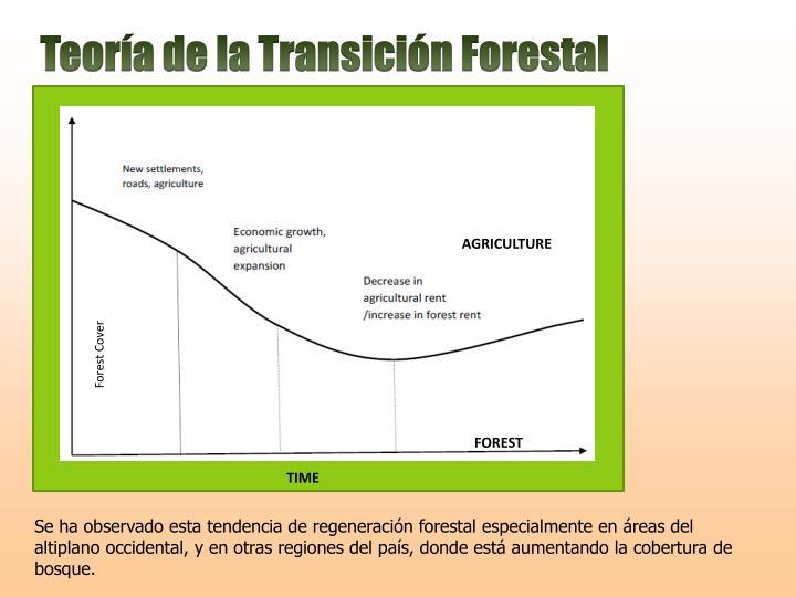 Teoría de la Transición Forestal