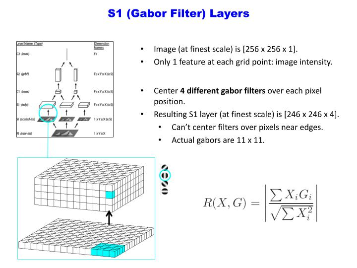 S1 (Gabor Filter) Layers