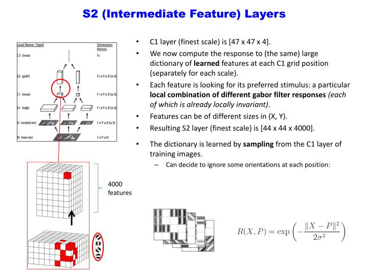 S2 (Intermediate Feature) Layers