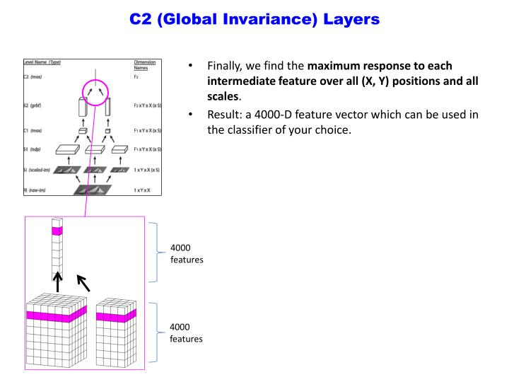 C2 (Global Invariance) Layers