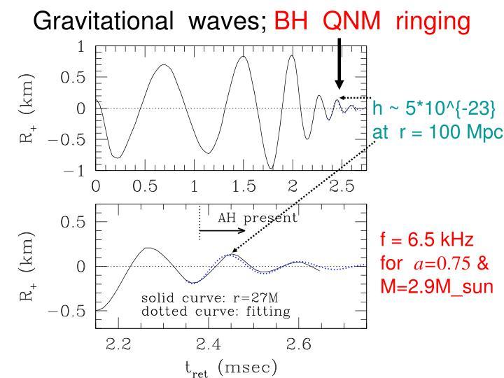 Gravitational  waves;