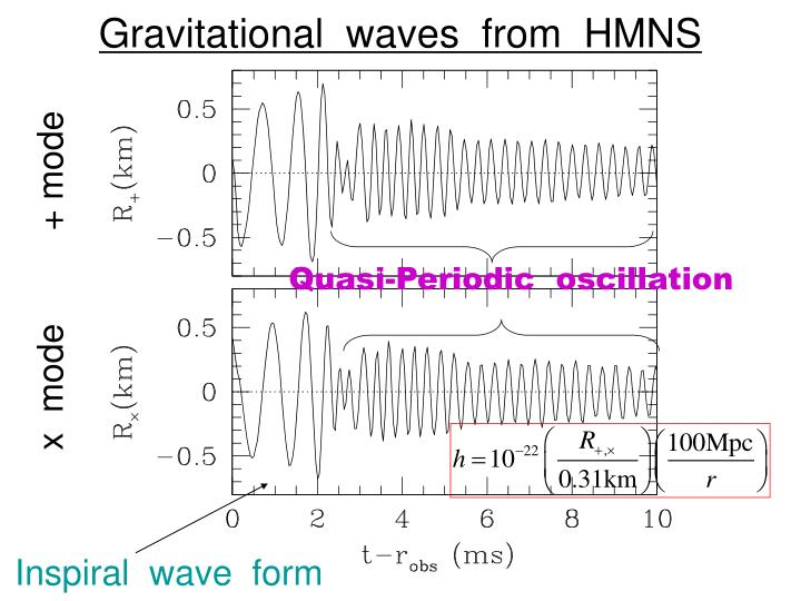 Gravitational  waves  from  HMNS