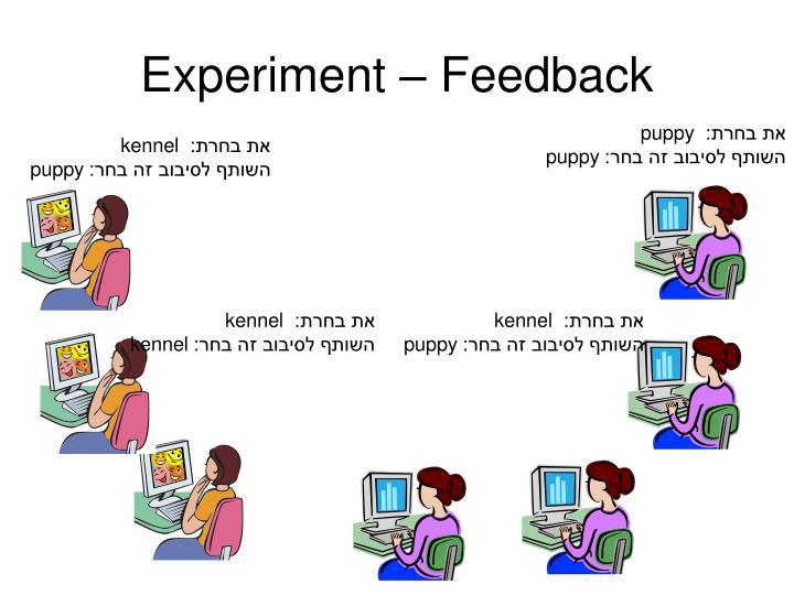 Experiment – Feedback
