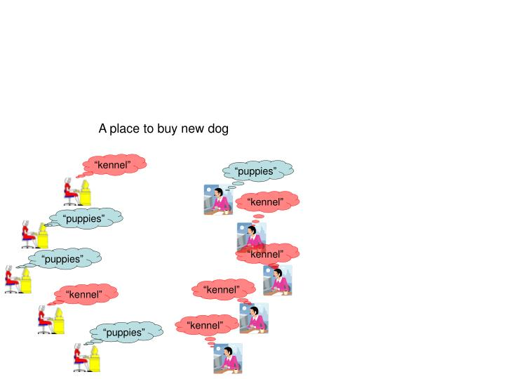 A place to buy new dog