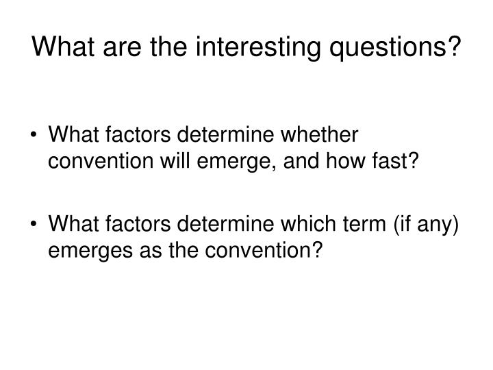 What are the interesting questions?