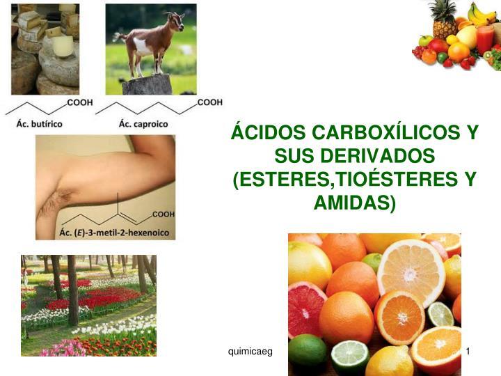 cidos carbox licos y sus derivados esteres tio steres y amidas n.