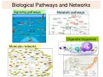 biological pathways and networks