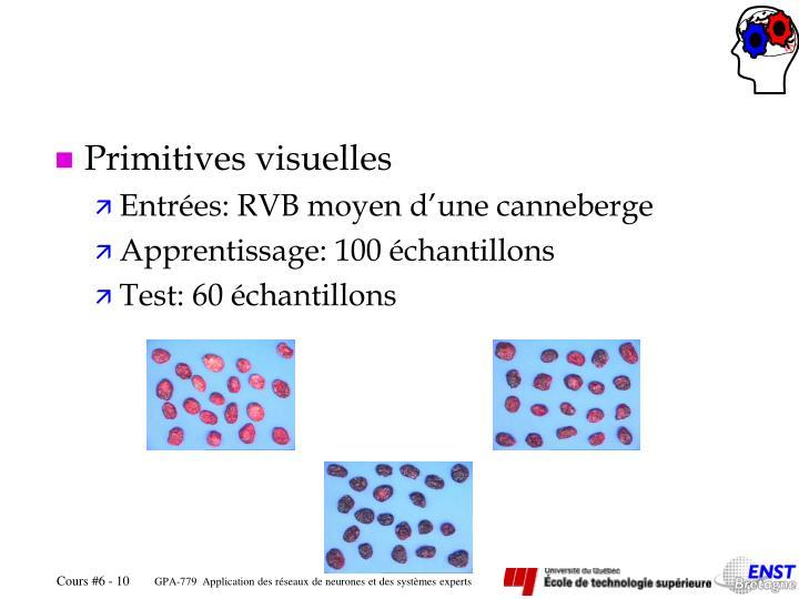Primitives visuelles
