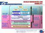 human resources and mobility7