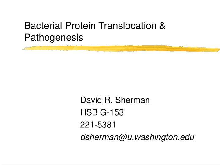 bacterial protein translocation pathogenesis n.