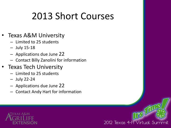 2013 Short Courses